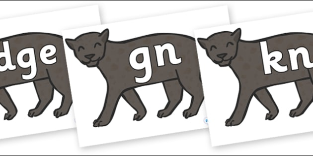 Silent Letters on Panthers - Silent Letters, silent letter, letter blend, consonant, consonants, digraph, trigraph, A-Z letters, literacy, alphabet, letters, alternative sounds