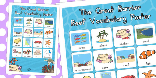 Great Barrier Reef Vocabulary Poster - australia, vocabulary