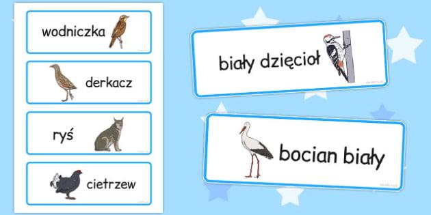 Plansza ze slownictwem Wielkanoc po polsku - nauczanie , Polish