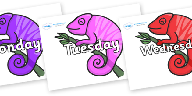 Days of the Week on Chameleons - Days of the Week, Weeks poster, week, display, poster, frieze, Days, Day, Monday, Tuesday, Wednesday, Thursday, Friday, Saturday, Sunday