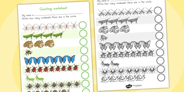 Minibeasts Counting Worksheet - counting aid, count, numeracy