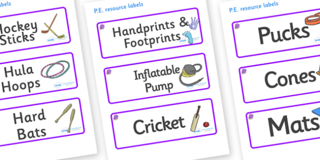 Amethyst Themed Editable PE Resource Labels - Themed PE label, PE equipment, PE, physical education, PE cupboard, PE, physical development, quoits, cones, bats, balls, Resource Label, Editable Labels, KS1 Labels, Foundation Labels, Foundation Stage L