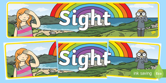 Sight Display Banner