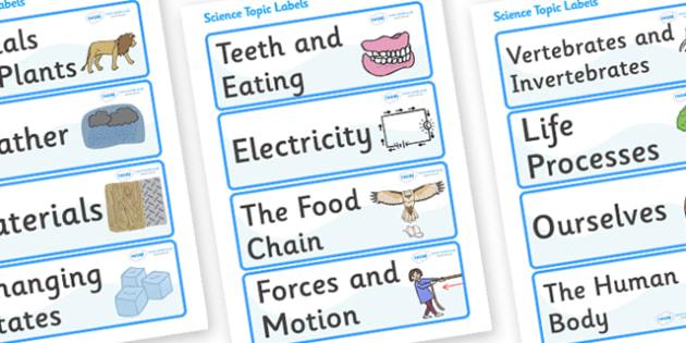 Science Topic Labels - science, topic labels, science, subject, school, area, label, cupboard, Resource Labels, Name Labels, Editable Labels, Drawer Labels, Coat Peg Labels, Peg Label, KS1 Labels, Foundation Labels, Foundation Stage Labels, Tea