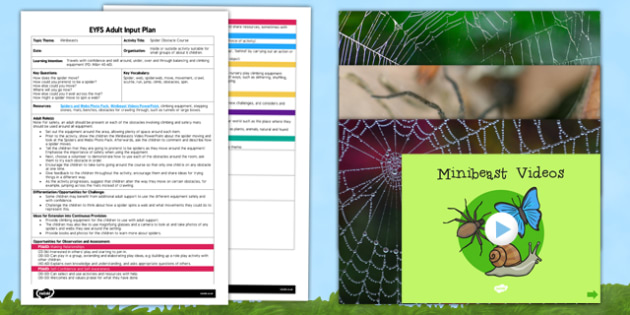 Spider Obstacle Course EYFS Adult Input Plan and Resource Pack - lesson plan
