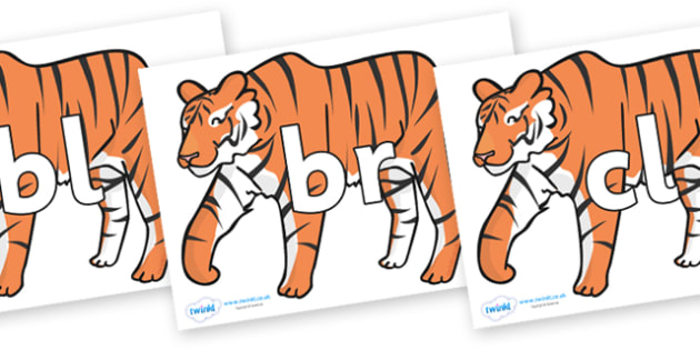Initial Letter Blends on Chinese New Year Tiger - Initial Letters, initial letter, letter blend, letter blends, consonant, consonants, digraph, trigraph, literacy, alphabet, letters, foundation stage literacy