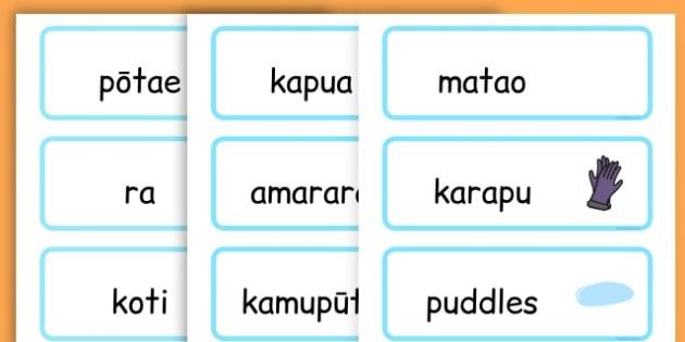 Winter Word Cards - seasons, weather, key words, visual aids  - Maori