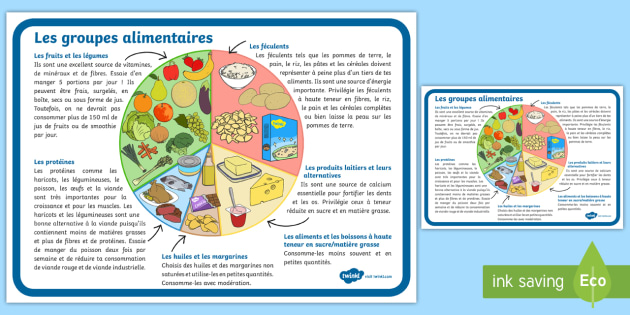 Grand poster d'information : Les groupes alimentaires - alimentation, eating, sain, healthy, santé, health, malsain, unhealthy, manger, food, groupes, grou