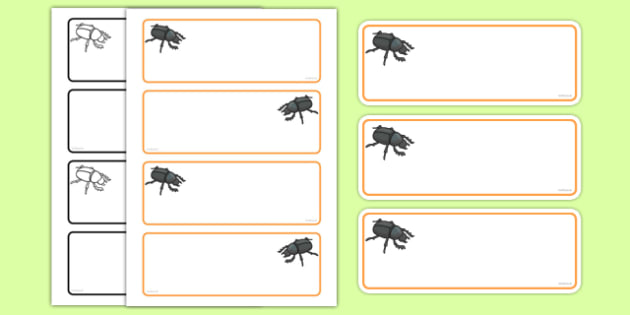Beetle Themed Editable Drawer-Peg-Name Labels (Colourful) - Themed Classroom Label Templates, Resource Labels, Name Labels, Editable Labels, Drawer Labels, Coat Peg Labels, Peg Label, KS1 Labels, Foundation Labels, Foundation Stage Labels, Teaching L