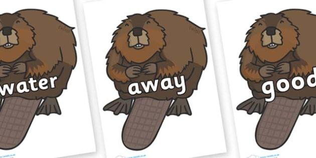 Next 200 Common Words on Beavers - Next 200 Common Words on  - DfES Letters and Sounds, Letters and Sounds, Letters and sounds words, Common words, 200 common words