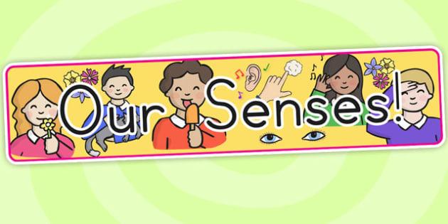 Our Senses Display Banner - senses, ourselves, my body, feelings