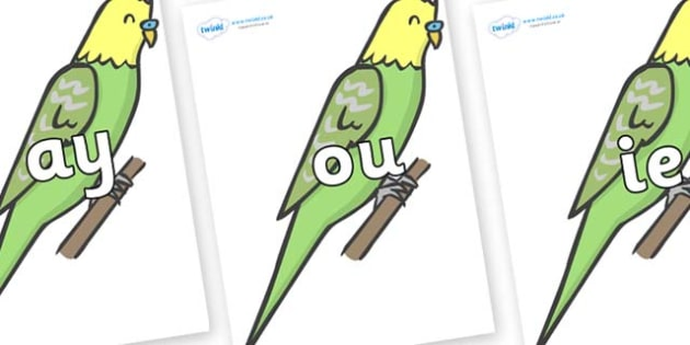 Phase 5 Phonemes on Budgies - Phonemes, phoneme, Phase 5, Phase five, Foundation, Literacy, Letters and Sounds, DfES, display