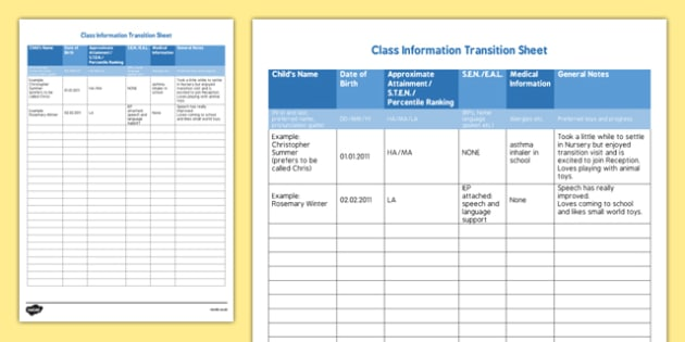 ROI Class Information Transition Sheet Checklist - Irish