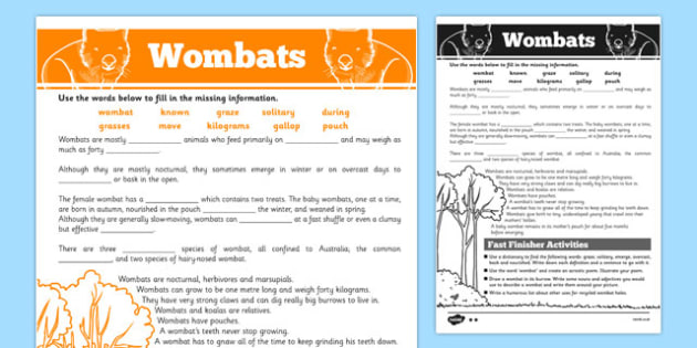 Australian Animals Years 3-6 Wombats Differentiated Cloze Passage Activity Sheets - australia, Australian Curriculum, animals, marsupials, wombats, differentiated, cloze, fast finisher, information, reading, worksheet