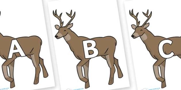 A-Z Alphabet on Stags - A-Z, A4, display, Alphabet frieze, Display letters, Letter posters, A-Z letters, Alphabet flashcards