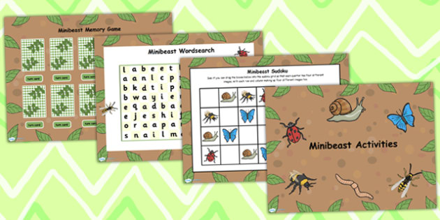 Minibeast Interactive Whiteboard Flipchart Activity Pack - insect