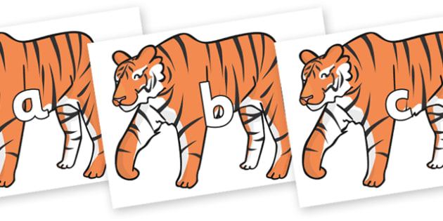 Phase 2 Phonemes on Chinese New Year Tiger - Phonemes, phoneme, Phase 2, Phase two, Foundation, Literacy, Letters and Sounds, DfES, display