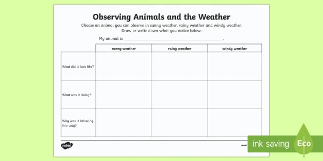 Observing Animals and the Weather Activity Sheet-Australia - Australian Curriculum, biological sciences, Year One Australian curriculum, animal behaviour, animal