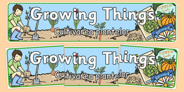 Growing Things Banner Romanian Translation - romanian, grow, growth, header