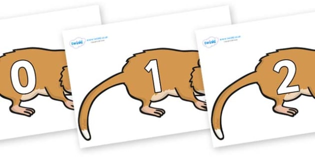 Numbers 0-31 on Hamsters - 0-31, foundation stage numeracy, Number recognition, Number flashcards, counting, number frieze, Display numbers, number posters