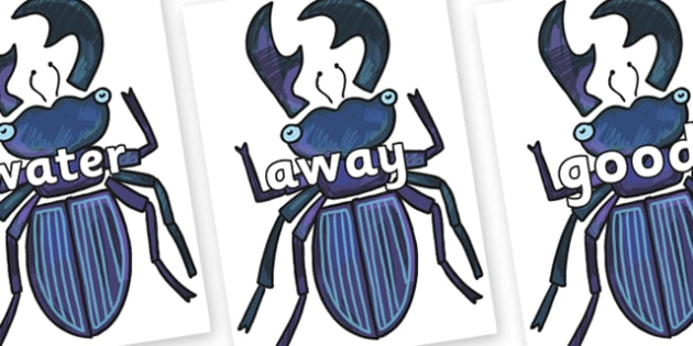 Next 200 Common Words on Stag Beetle to Support Teaching on The Bad Tempered Ladybird - Next 200 Common Words on  - DfES Letters and Sounds, Letters and Sounds, Letters and sounds words, Common words, 200 common words