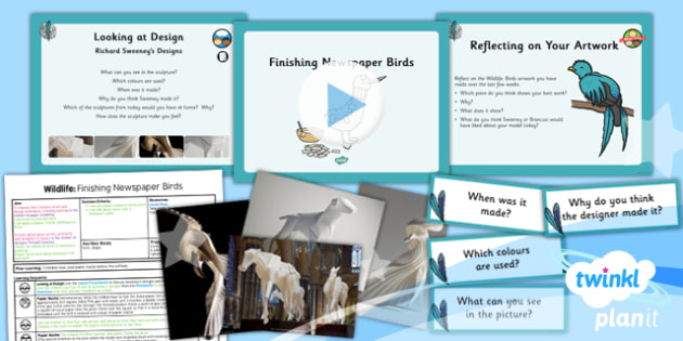 Art: Wildlife: Finishing Newspaper Birds UKS2 Lesson Pack 6
