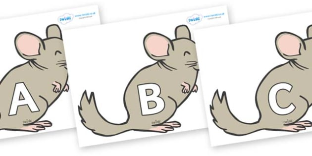 A-Z Alphabet on Chinchillas - A-Z, A4, display, Alphabet frieze, Display letters, Letter posters, A-Z letters, Alphabet flashcards