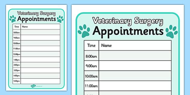 Vets Surgery Pet Appointments Form - Vets, vet, vet role play, pet, pets, pet appointment, appointments, form, animal information, vet, operation, xray, nurse, medicine, vaccine, bandage, cat, dog, rabbit