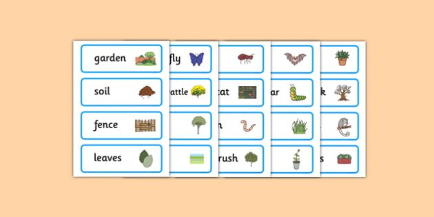 Backyard Habitat Word Cards - australia, Science, Year 1, Habitats, Australian Curriculum, Backyard, Living, Living Adventure, Environment, Living Things, Animals, Plants, Word Cards