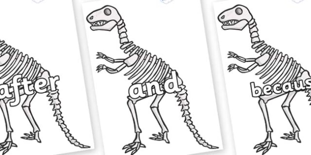 Connectives on Dinosaur Skeletons - Connectives, VCOP, connective resources, connectives display words, connective displays
