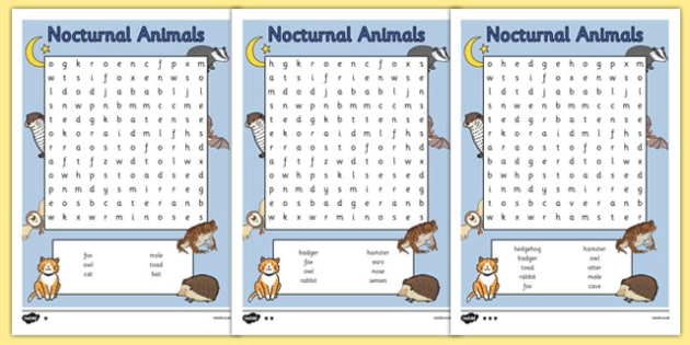 Nocturnal Animals Differentiated Word Search - nocturnal animals, word search, differentiated