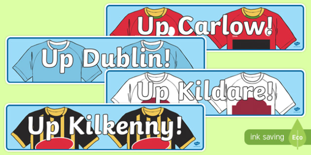 Leinster Counties GAA Display Banner-Irish