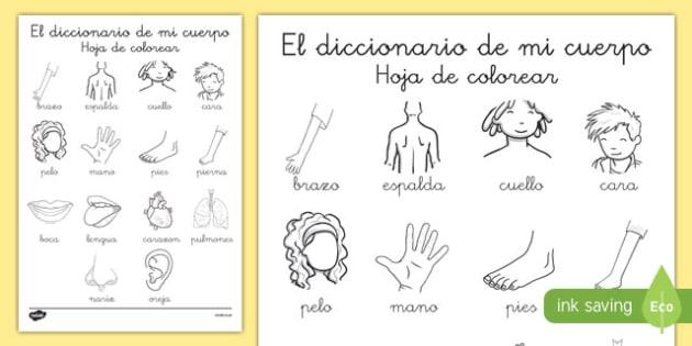 Diccionario para colorear - Mi cuerpo