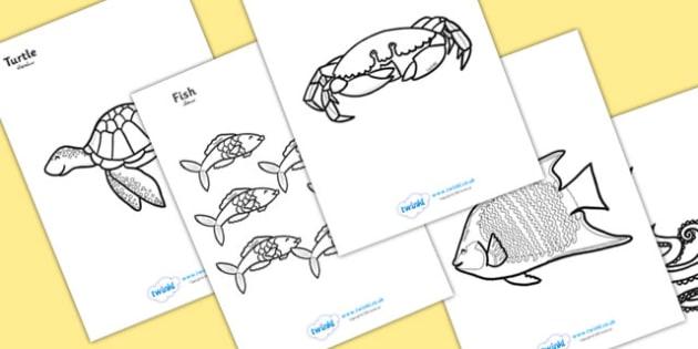 ملصقات تلوين عن تحت البحر إنجليزي عربي