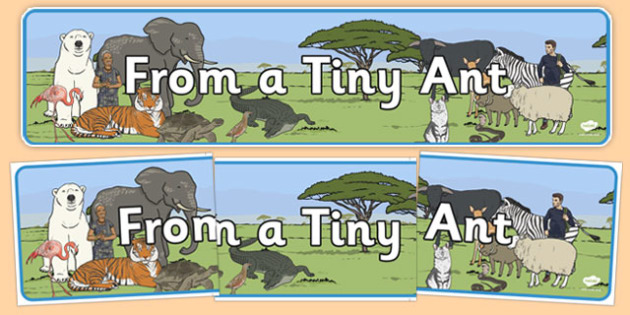 From a Tiny Ant Display Banner - from a tiny ant, display banner, display, banner, tiny ant