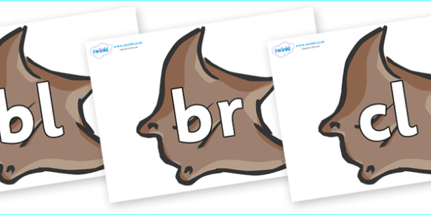 Initial Letter Blends on Manta Rays - Initial Letters, initial letter, letter blend, letter blends, consonant, consonants, digraph, trigraph, literacy, alphabet, letters, foundation stage literacy