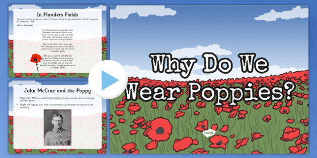 Why Do We Wear Poppies? PowerPoint New Zealand, Anzac, Poppy