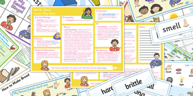 My Senses KS1 Lesson Plan Ideas and Resource Pack - ks1, plan