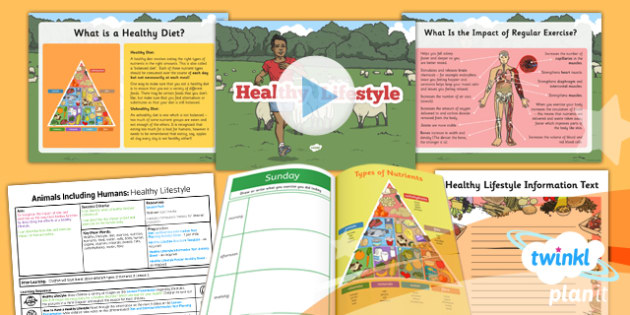 Science: Animals Including Humans: Healthy Lifestyle Year 6 Lesson Pack 4