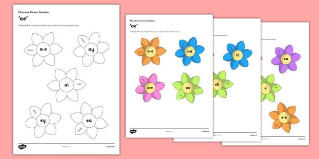 CfE Phoneme Flower Display Pack - CfE, phoneme, ae,a-e,ai, ey, ea