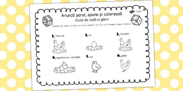 Ciclul de viață la găină - Aruncă zarul și colorează