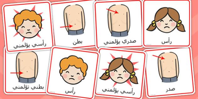 بطاقات تواصل عن أجزاء الجسم - أجزاء الجسم، مورد تعليمي