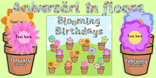 Blooming Birthdays Flower Display Pack Romanian Translation-Romanian-translation