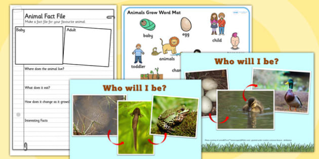 Animals Grow Can You Guess Who I Will Grow Up to Be PowerPoint