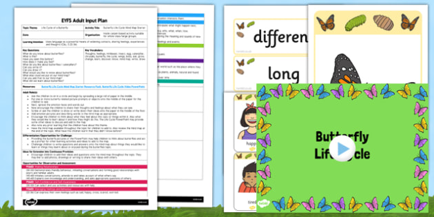 Butterfly Life Cycle Mind Map Starter Activity EYFS Adult Input Plan and Resource Pack - EYFS, Early Years planning, adult led, insects, minibeasts, C&L, Communication and Language