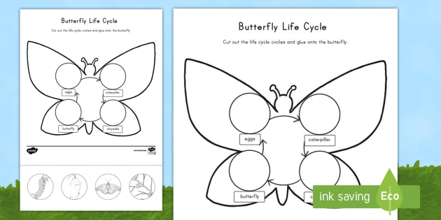 Equivalent Fractions Worksheet 3rd Grade Excel Butterfly Life Cycle Cut And Paste Activity Sheet  Usa Early Math Worksheet First Grade with Printable Pattern Worksheets For Kindergarten Pdf Butterfly Life Cycle Cut And Paste Activity Sheet  Usa Early Childhood  Science Life Cycles Second Grade Multiplication Worksheet Excel