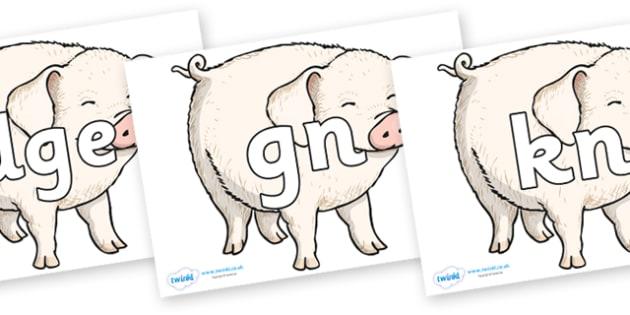 Silent Letters on Wilbur - Silent Letters, silent letter, letter blend, consonant, consonants, digraph, trigraph, A-Z letters, literacy, alphabet, letters, alternative sounds
