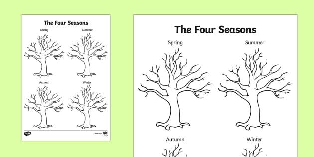 Four Seasons Tree Drawing Template - seasons, trees, plants, draw