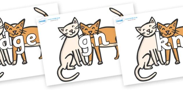 Silent Letters on Cats - Silent Letters, silent letter, letter blend, consonant, consonants, digraph, trigraph, A-Z letters, literacy, alphabet, letters, alternative sounds