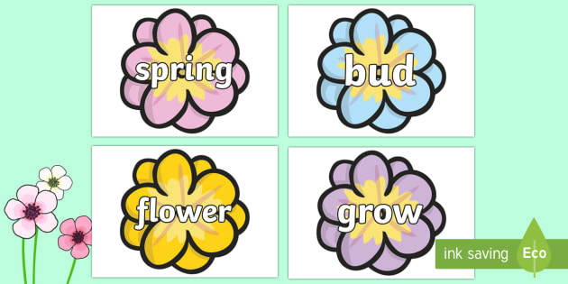 Spring Words On Flowers - spring, flowers, word cards, flashcards, cards, words, blossom, seasons, sun, new, bud, season, daffodil, shoot